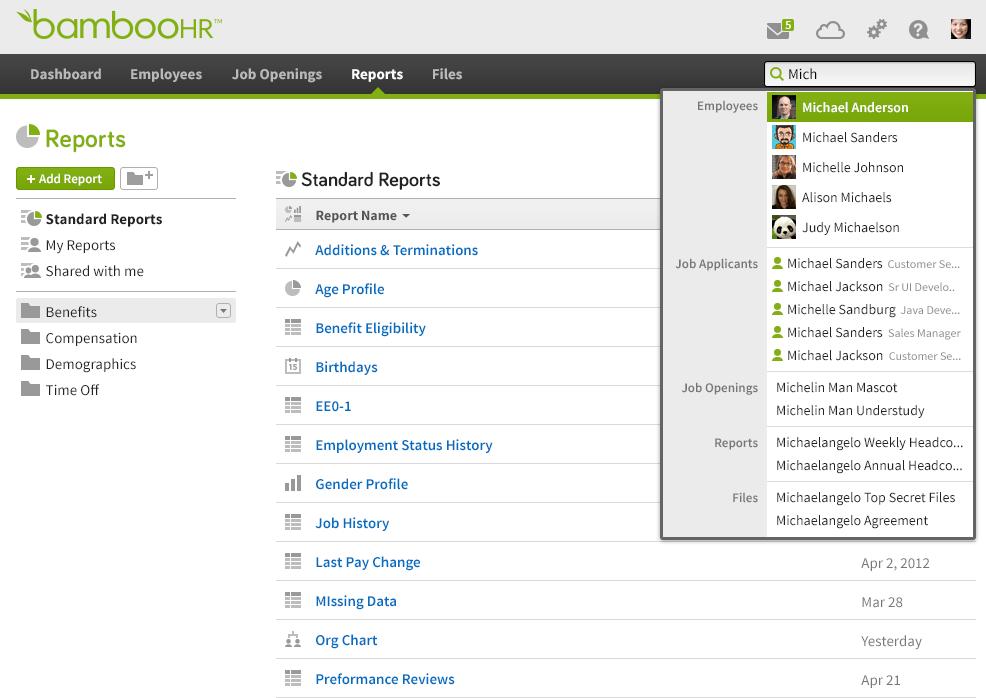 bamboohr reporting screenshot