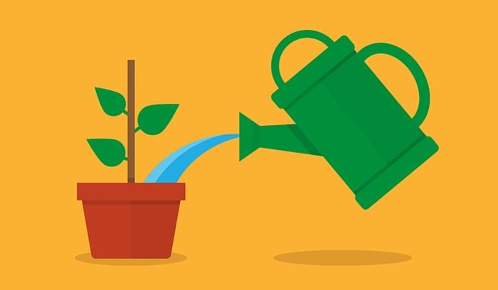 5 Lead Nurturing Best Practices (and Worst Practices)