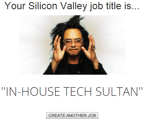 Silicone Valley Job Titles