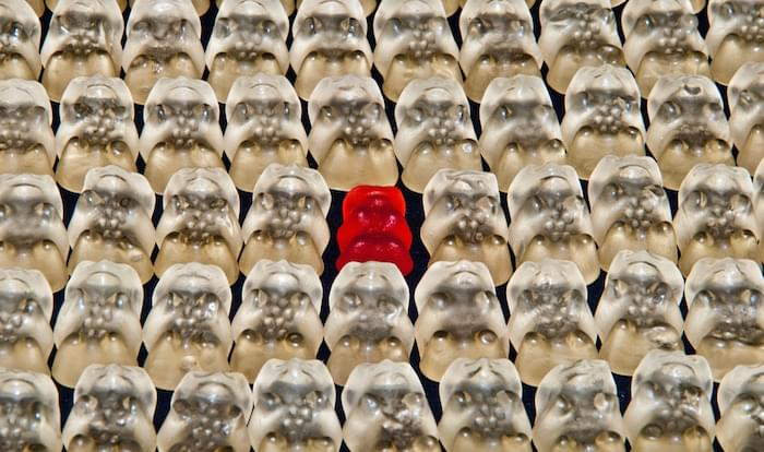 one red gummi bear in a sea of white