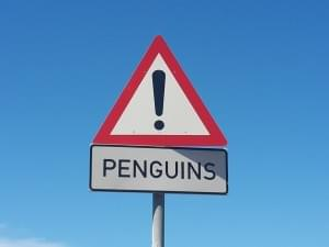 penguin_4_coming