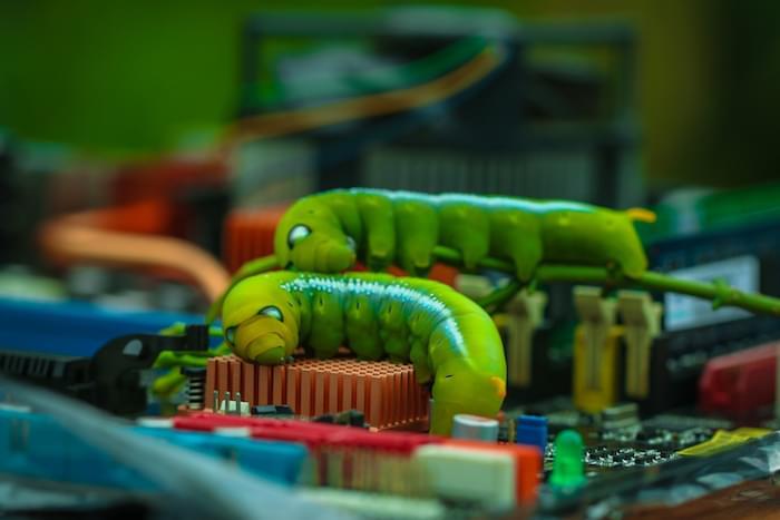Worm, computer, virus, Big green worm Malicious computer.