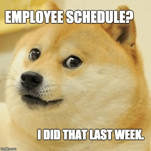 doge does the schedule