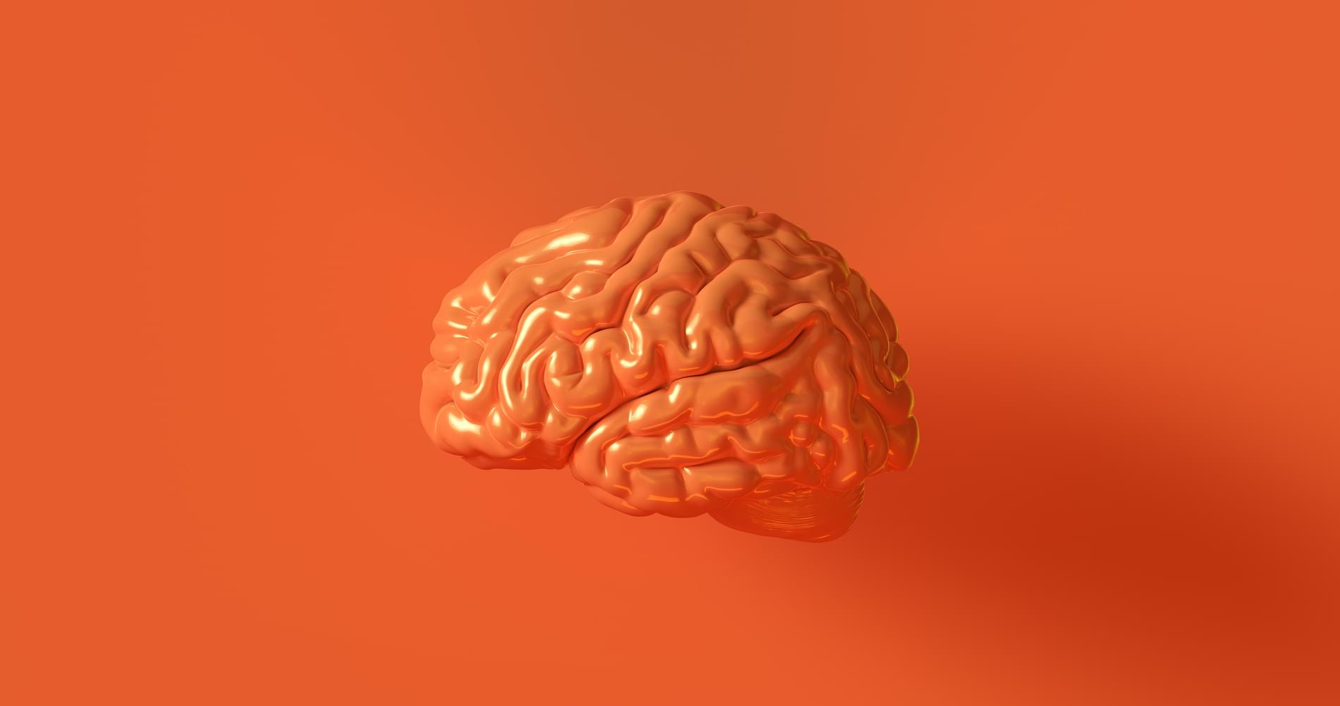 Human brain suspended in the air against an orange wall