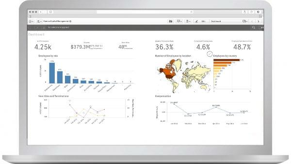 QlikView HR data visualization and BI